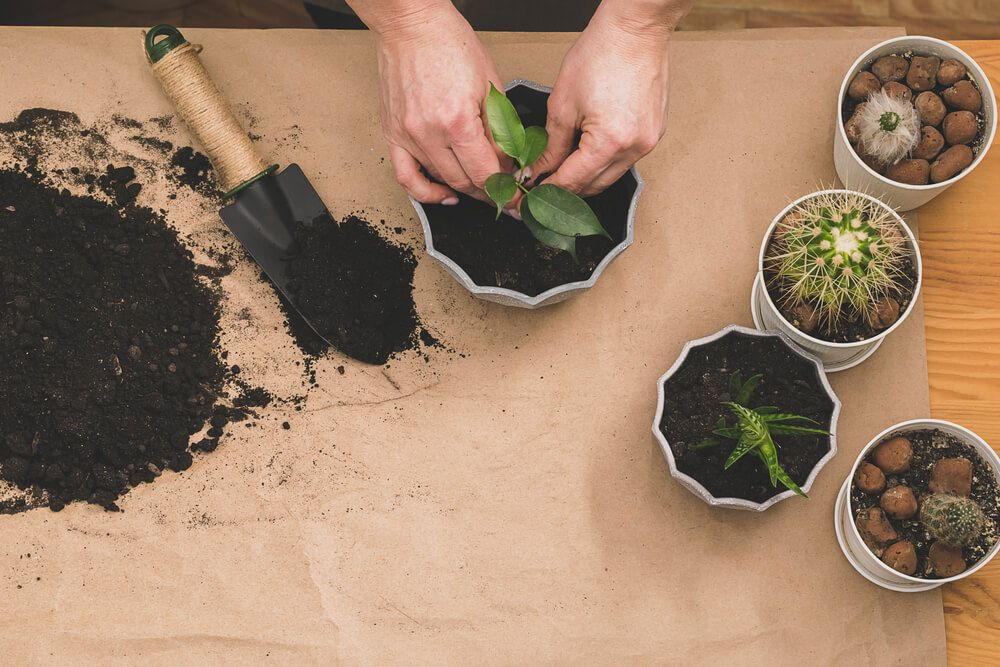 potted plants with human hand, soil, and spade - Big Easy Landscaping