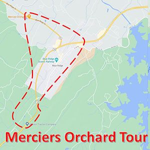 merciers map